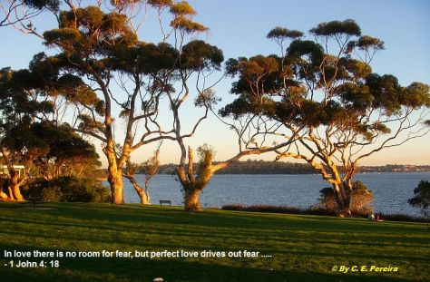 Western Australia - 2010